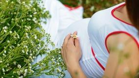 Bebé que espera de la mujer embarazada para en la hierba en un campo con las flores blancas imágenes de archivo libres de regalías