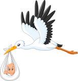 Bebé que lleva de la cigüeña de la historieta Fotografía de archivo libre de regalías