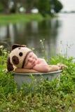 Bebé que lleva un sombrero del perro de perrito Fotografía de archivo