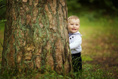 Bebé que oculta detrás de árbol en parque Foto de archivo libre de regalías