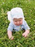 Bebé que se arrastra en el prado Imagen de archivo libre de regalías