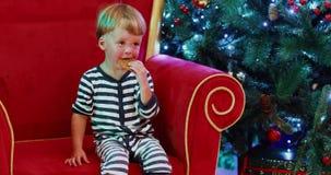 Bebé que se sienta cerca del árbol de navidad y que come el pan de jengibre de la galleta almacen de metraje de vídeo