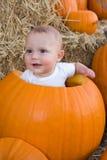 Bebé que se sienta en calabaza hueco Fotografía de archivo