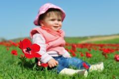 Bebé que se sienta en campo florido Imágenes de archivo libres de regalías
