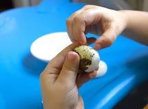 Bebé que sostiene el huevo de codornices, forma de vida sana Adiete el alimento foto de archivo