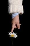 Bebé que toca una flor Foto de archivo