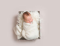 Bebé que toma una siesta en la cesta, envuelta para arriba, topview Fotografía de archivo