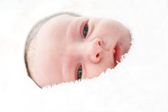 Bebé recién nacido 5 minutos después de ser llevado. Fotografía de archivo libre de regalías