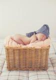 Bebé recién nacido del sueño dulce en una cesta grande imágenes de archivo libres de regalías