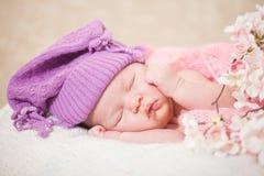 Bebé recién nacido durmiente (a la edad de 14 días) Imágenes de archivo libres de regalías