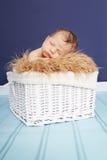 Bebé recién nacido en cesta Foto de archivo libre de regalías