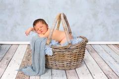 Bebé recién nacido en cesta fotos de archivo libres de regalías