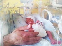 Bebé recién nacido en una incubadora Fotos de archivo