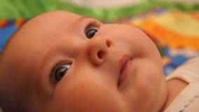 Bebé recién nacido Pequeño bebé Bebé que mira en la cámara Niño Bebé adorable almacen de metraje de vídeo