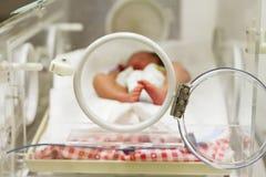Bebé recién nacido que duerme dentro de la incubadora Foto de archivo