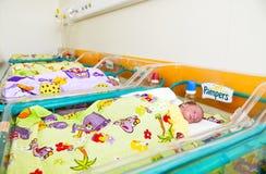 Bebé recién nacido que duerme en cama en hospital Foto de archivo