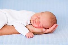 Bebé recién nacido que duerme en la mano de su padre Imagen de archivo libre de regalías