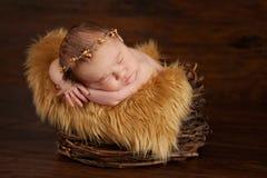 Bebé recién nacido que lleva una corona de la ramita Foto de archivo