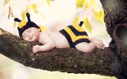 Bebé recién nacido vestido como abeja Imagen de archivo libre de regalías