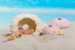 Bebé soñoliento en erizo de mar Fotos de archivo libres de regalías