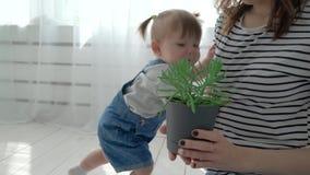 Bebé sonriente adorable que se arrastra en piso hacia la cámara metrajes
