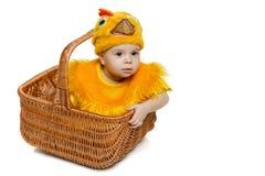 Bebé sonriente que se sienta en la cesta de Pascua en traje del pollo Fotografía de archivo