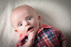 Bebé surpreendido Imagem de Stock