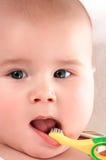 Bebé toothbrooshing4 Fotografía de archivo