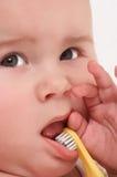 Bebé toothbrooshing4 Imagen de archivo libre de regalías