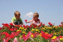 Bebé y niño en flores Fotos de archivo libres de regalías