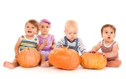 Bebés con las calabazas fotografía de archivo