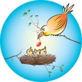 Bebés de alimentación Imagen de archivo libre de regalías