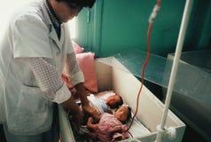 Bebés de ICU en una caja Fotos de archivo