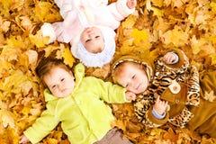 Bebés en las hojas Imagenes de archivo