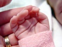 Bebés poca mano Fotos de archivo libres de regalías