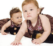 Bebés que exploran y que juegan Foto de archivo libre de regalías