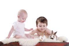 Bebés y conejitos Imagen de archivo libre de regalías
