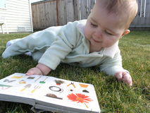 Bebê   Imagem de Stock