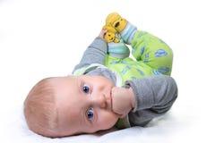 Bebê 6 meses velho Fotografia de Stock