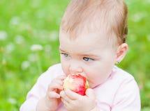 Bebê adorável Fotos de Stock