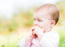 Bebê adorável Imagens de Stock Royalty Free