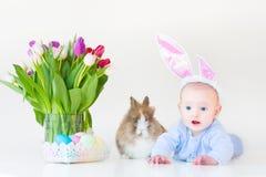 Bebê adorável com as orelhas do coelho com coelho real Fotos de Stock Royalty Free