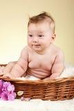 Bebê adorável na cesta de vime Fotos de Stock Royalty Free