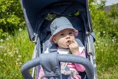 Beb? alegre 9 meses que comem o trevo que senta-se em um carrinho de crian?a A crian?a come plantas selvagens, a filha encontra a fotografia de stock