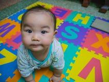 Bebê asiático considerável de Cutie foto de stock royalty free