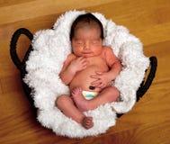 Bebê bonito adormecido na cesta imagens de stock royalty free