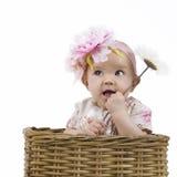 Bebê bonito em uma cesta Foto de Stock