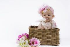 Bebê bonito em uma cesta Imagem de Stock