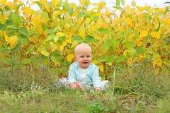 Bebê bonito fora na natureza no outono Fotos de Stock