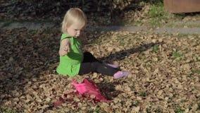 Bebê bonito que joga com as folhas no outono video estoque